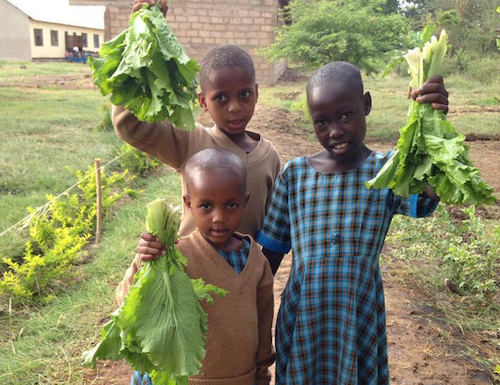 Bandari students holding green leafy vegetables
